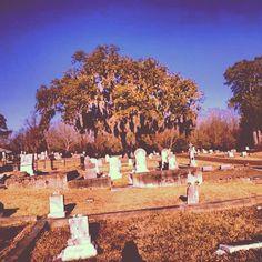 Natchez City Cemetery #throughglass #googleglass #glass