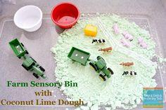 (FSPDT): Farm Sensory Bin