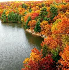 Fall!!