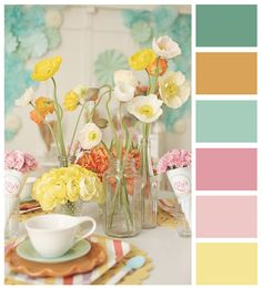beautiful palette