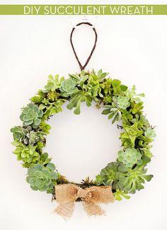 DIY Live Succulent Wreath