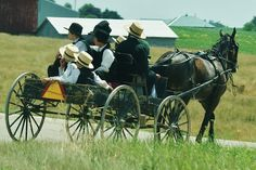 Amish Buggy Ride    Amish family traveling in true Amish style along a road near Boscobel, Wisconsin