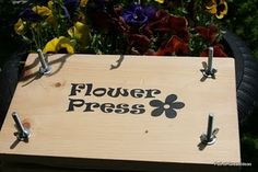 flower press (did i pin this already?)