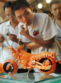shell, food sculpture, motorcycl, asian cooking, body modifications