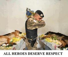 this breaks my heart :(