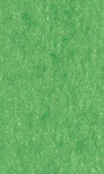Tissue Paper - Lawn Green