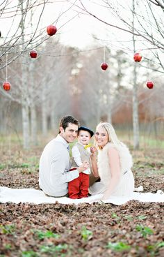 Cheap ornaments hanging from branches for family Christmas pic --