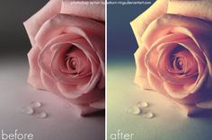 100 Free Photoshop Actions and how to make your own.