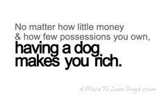 YES! dog love