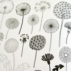"""""""20 Ways to Draw a Tree and 44 Other Nifty Things from Nature"""" by Eloise Renouf"""