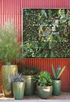 Succulent Wall.....