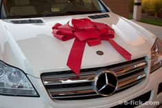 I will have my white Mercedes Benz  Arbonne company car by Nov 7th, 2014