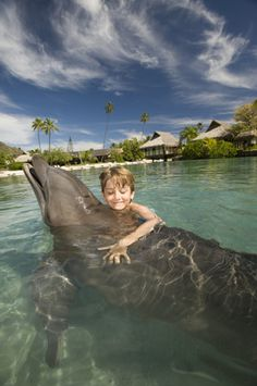 I want to do this with Elizabeth! She loves Beautiful Animals!! Dolphins are so peaceful
