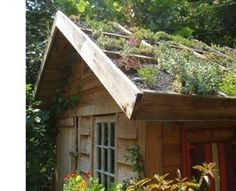green roof!