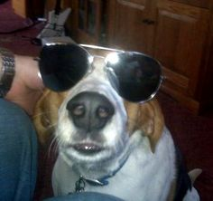 Brady's future is so bright, he's gotta wear shades! #ArloNeedsGlasses