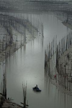"""3441 The """"S"""" bend--Xiapu , Fujian Province , China"""