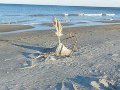 Peaceful Tybee Island...
