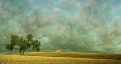 lisa wood, galleries, favorit place, washington state, photographs, art, farmland, idaho no9, photography