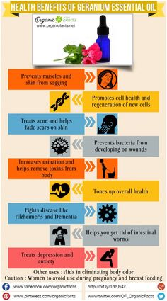 Health Benefits of Geranium Essential Oil | Organic Facts