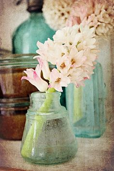 Shabby chic pink flowers, color, shabby chic, jar, pale pink, glass, bottles, aqua, blues
