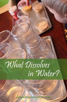 An experiment to find out what dissolves (and what doesn't) - using stuff from the pantry!