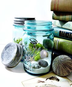 Upcycled Mason Jar Terrarium / Antique Blue Ball Mason Jar / Wedding Table Decor / Air Plant / DIY Terrarium Kit