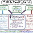 Free! Multiple Meaning Words Chart....Explaining Multiple meanings of what heterographs, homonyms and heteronyms are