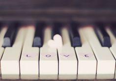 music, computers, books, heart, the piano, seed, piano keys, earth, pianos