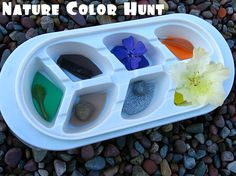 Match colors in your tray to things found in your yard.