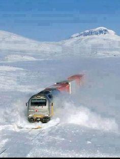 Norwegian train can go anywhere.