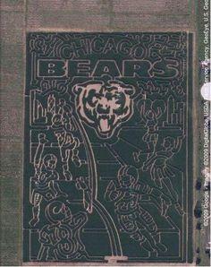Chicago Bears crop maze