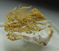 Mineral Shows - Mineral Specimens, News & Reports----Click on ad at www.goldshopper.org for free gold or silver! #gold bullion #Bullion #Gold #Silver #Platinum #Palladium #Bullion #GoldCoins #Precious #PreciousMetal #gold nugget #gold nuggets