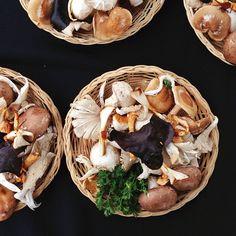 Mushrooms / @jchongstudio on instagram