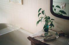 futur hous, plant, green, bathroom
