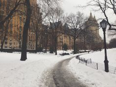 Post snowfall in Central Park