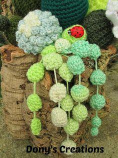 Amigurumis cactus on pinterest 48 pins for Piante grasse uncinetto