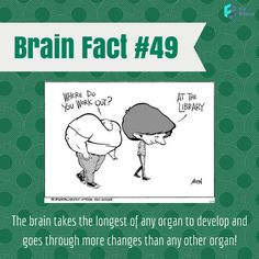 Brain #Fact of the Day! Keep your brain in the best shape with Fit Brains games: http://taps.io/fitbrains #health #fun #smart