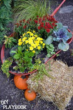 Fantastic wheelbarrow planter!