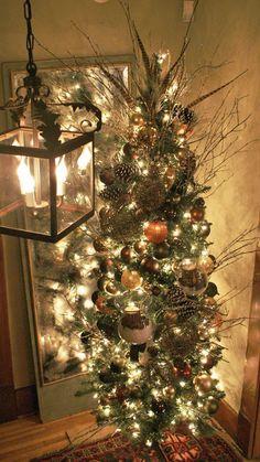 Skinny and tall Pretty Christmas Tree