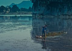 Fishing for Seaweed, harvesting seaweed in Guiling, Guangxi, China. By Nina Matzat Photography