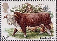 British Cattle 26p Stamp (1984) Hereford Bull