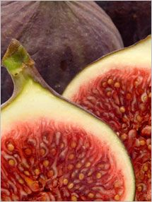 Storing and Using Figs