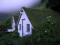 Old Icelandic Houses in the morning fog