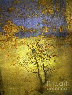 The Sunrise - Tara Turner