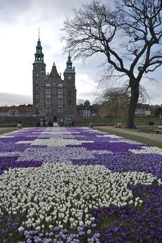 copenhagen, castles, rosenborg castl, travel, denmark, crocus bloom, place, garden, flower