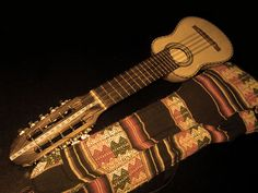 Native American Instrument - an indigenous American string instrument. Its a Charango from the Andes.