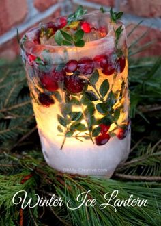 Winter Ice Lantern    OhMy-Creative.com