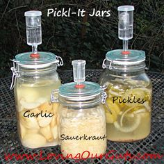Fermenting in Pickl-It Jars