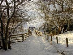 winter snow, paths, pathway, fenc, winter wonderland, road, winter scenes, walk, gate