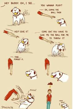 Something every #dog owner will understand. Dogs have a funny way of playing. #happydog #PetPremium